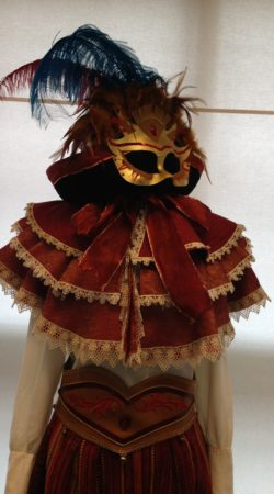 gelaarsde kat carnavalskostuum